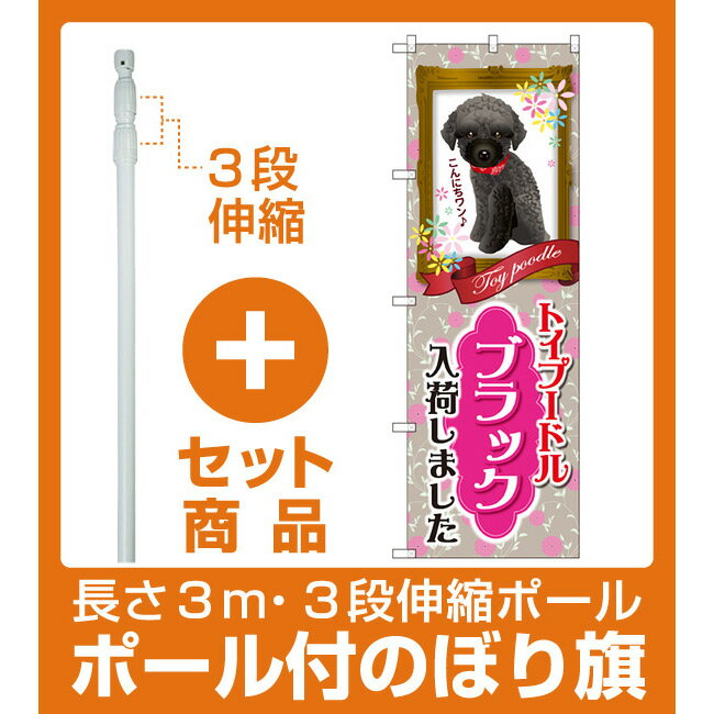 【セット商品】3m・3段伸縮のぼりポール(竿)付 のぼり旗 トイプードル ブラック 入荷 (GNB-2462)(業種別/ペットショップ/犬・猫・小動物)