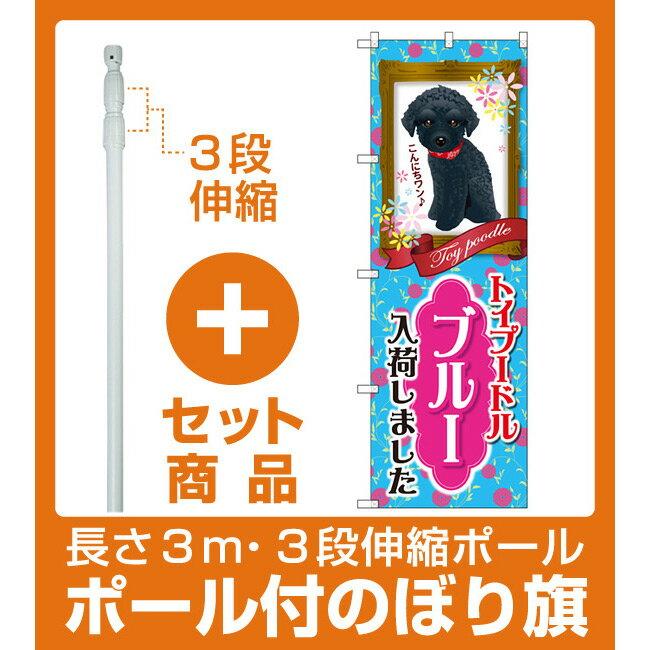 【セット商品】3m・3段伸縮のぼりポール(竿)付 のぼり旗 トイプードル ブルー 入荷 (GNB-2463)(業種別/ペットショップ/犬・猫・小動物)
