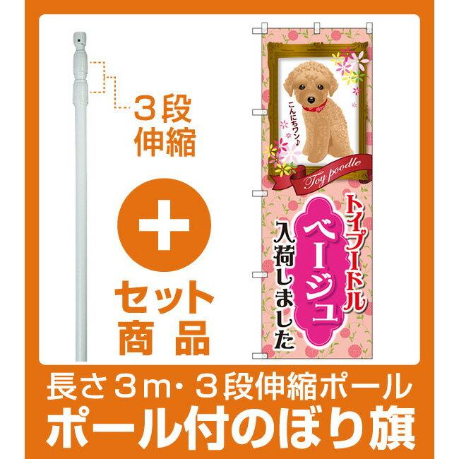 【セット商品】3m・3段伸縮のぼりポール(竿)付 のぼり旗 トイプードル ベージュ 入荷 (GNB-2464)(業種別/ペットショップ/犬・猫・小動物)