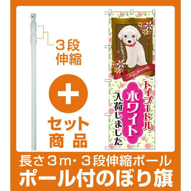 【セット商品】3m・3段伸縮のぼりポール(竿)付 のぼり旗 トイプードル ホワイト 入荷 (GNB-2465)(業種別/ペットショップ/犬・猫・小動物)