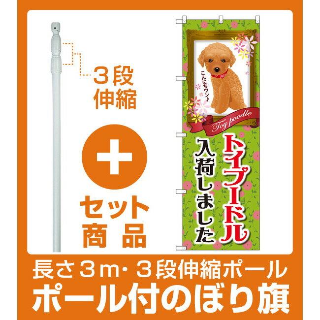 【セット商品】3m・3段伸縮のぼりポール(竿)付 のぼり旗 トイプードル入荷 (GNB-2467)(業種別/ペットショップ/犬・猫・小動物)