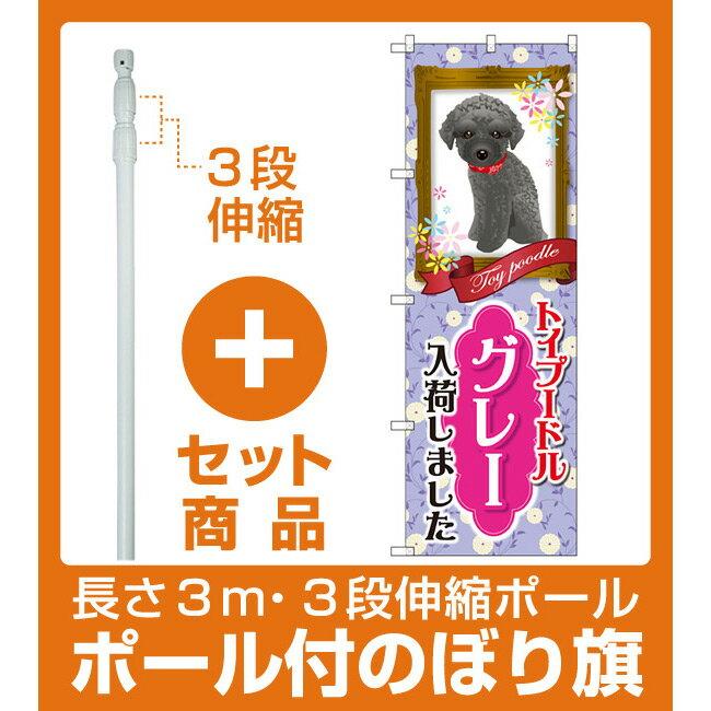 【セット商品】3m・3段伸縮のぼりポール(竿)付 のぼり旗 トイプードル グレー 入荷しました (GNB-2567)(業種別/ペットショップ/犬・猫・小動物)