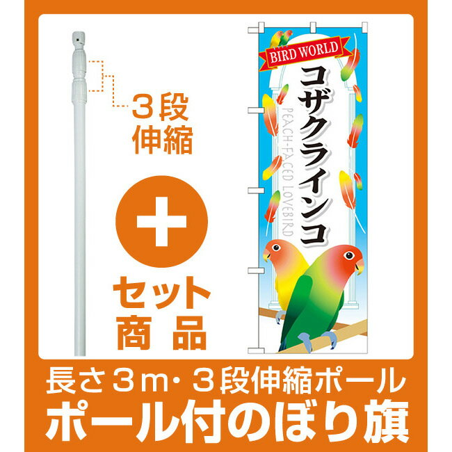 【セット商品】3m・3段伸縮のぼりポール(竿)付 のぼり旗 コザクインコ (GNB-615)(業種別/ペットショップ/鳥・インコ)
