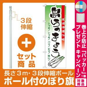【プレゼント付】【セット商品】3m・3段伸縮のぼりポール(竿)付 のぼり旗 島らっきょう (21203)