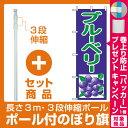 【プレゼント付】【セット商品】3m・3段伸縮のぼりポール(竿)付 のぼり旗 (2242) ブルーベリー 紫/緑 イラスト