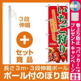 【セット商品】3m・3段伸縮のぼりポール(竿)付 のぼり旗 (2877) いちご狩り フレッシュな美味しさが一粒一粒詰まってます(果物・フルーツ)