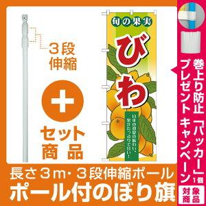 【プレゼント付】【セット商品】3m・3段伸縮のぼりポール(竿)付 のぼり旗 (7976) 旬の果実 びわ