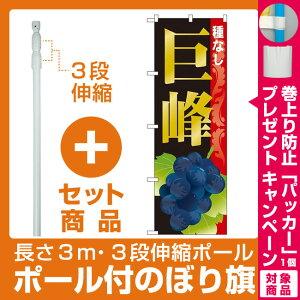 【プレゼント付】【セット商品】3m・3段伸縮のぼりポール(竿)付 のぼり旗 巨峰種なし (SNB-1369)
