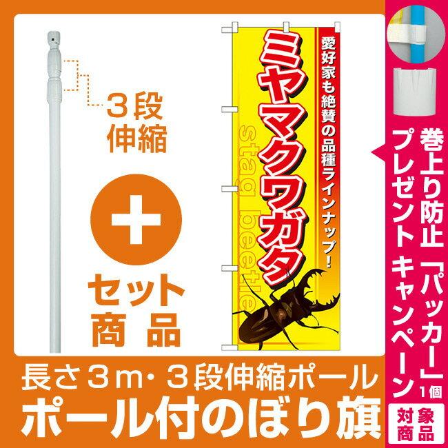 【プレゼント付】【セット商品】3m・3段伸縮のぼりポール(竿)付 のぼり旗 ミヤマクワガタ (GNB-597)