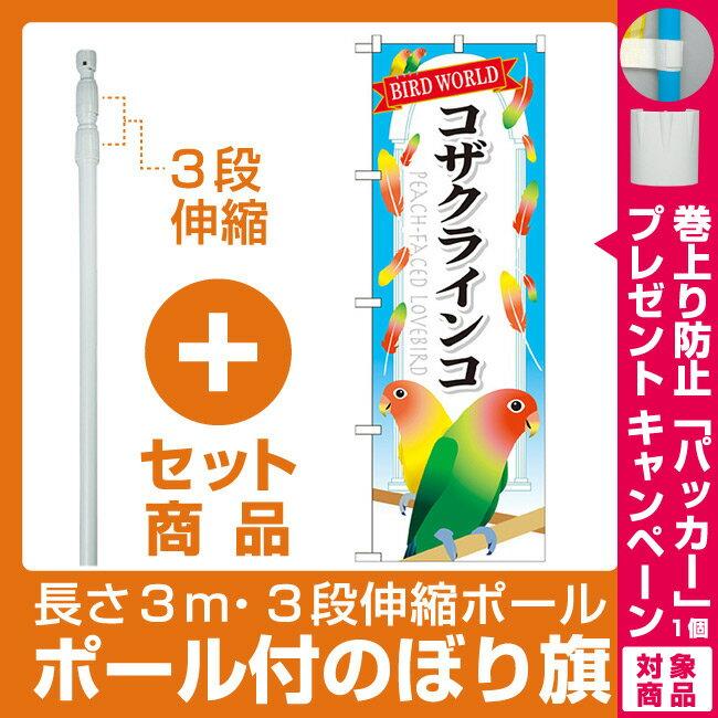 【プレゼント付】【セット商品】3m・3段伸縮のぼりポール(竿)付 のぼり旗 コザクインコ (GNB-615)