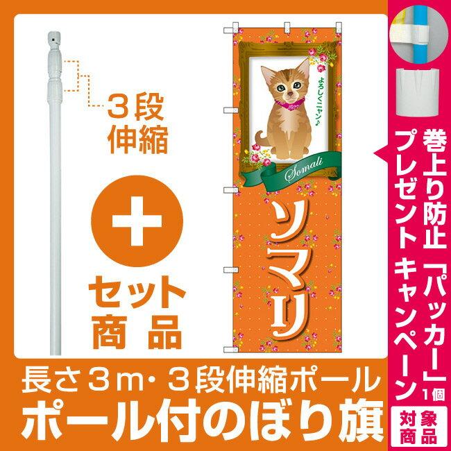 【プレゼント付】【セット商品】3m・3段伸縮のぼりポール(竿)付 のぼり旗 ソマリ (GNB-2448)