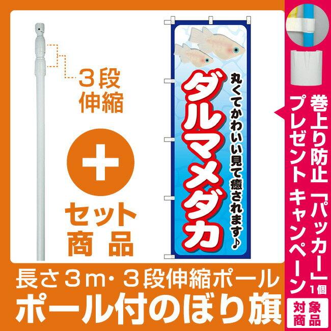 【プレゼント付】【セット商品】3m・3段伸縮のぼりポール(竿)付 のぼり旗 ダルマメダカ (GNB-2449)