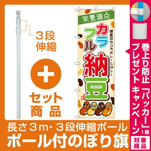 【プレゼント付】【セット商品】3m・3段伸縮のぼりポール(竿)付 のぼり旗 カラフル納豆 (SNB-2052)