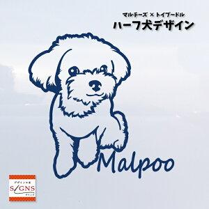 ハーフ犬 マルプー 犬 車 ステッカー マルチーズ & トイプードル かわいい 転写式 車ステッカー ミックス犬 dog ペット シール プレゼント 贈り物 2 カッティングシート デザイン工房 オリジナ