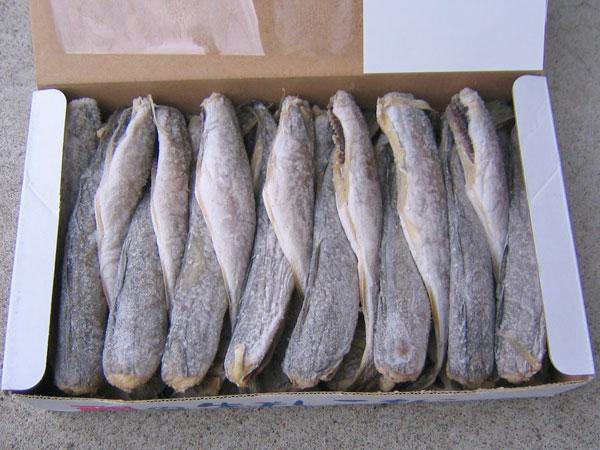 送料無料北海道根室産 氷下魚(コマイ・こまい)天日干し 1kg(Mサイズ・30尾前後)
