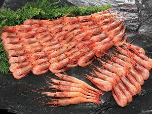 【送料無料】甘エビ(生冷凍・3L)1kg(ナンバンエビ)※バラ詰めです。