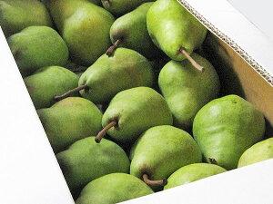洋梨パートレット 7Kg(秀品・27〜30玉前後)出荷期間 10月上旬〜10月中旬北海道フルーツの里産直送料無料