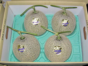 北海道北竜産 龍の鈴メロン(ひまわりメロン)秀 2kg×4玉送料無料出荷期間 7月上旬〜8月下旬