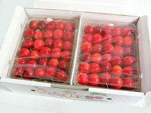 北海道増毛産 紅秀峰(L〜2L)2kg (500g×4パック)送料無料・生産元直送YES!clean表示農産物さくらんぼ(減農薬・減化学肥料)出荷期間:7月下旬