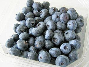 送料無料 北海道産ブルーベリー冷凍果実 500g(250g×2)