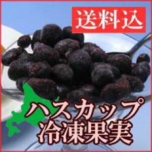 【送料込】北海道産 ハスカップ冷凍果実 500g(250g×2袋)【冷凍便】