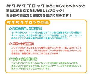 【ペタペタブロックコンテナケースセット】