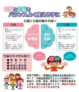 七田式・知力ドリル【2・3歳】えんぴつ