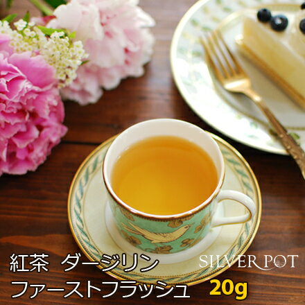 紅茶 ダージリン ファーストフラッシュ 2019年 サングマ茶園 SFTGFOP1 Flowery 20g