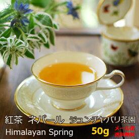紅茶 ネパール 春摘み ジュンチヤバリ茶園 Himalayan Spring 50g