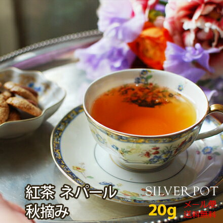 【メール便選択で送料無料】ネパールジュンチヤバリ茶園2017年秋摘み紅茶 Autumn Supreme (20g)