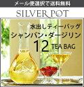 【メール便選択で送料無料】季節限定!水出し紅茶用ティーバッグ Champagne Darjeeling[シャンパン・ダージリン](12TB)