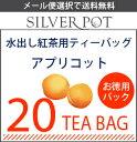 【メール便選択で送料無料】水出し紅茶用ティーバッグ・20TB入りお徳用パック「アプリコット」