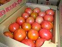 豊橋産 訳ありトマト約3.5kg〜 4kg入りX1ケース