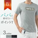 おしゃれママが選ぶ♪ シンプルポイントTシャツ メンズ 半袖 夏 秋 薄手 涼しい 紺 白 クルーネック 大人 きれいめ ワンポイント 爽やか カットソー 迷彩 カモフラージュ 春 30代 40代 50代 おしゃれ パパ