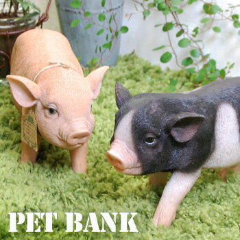 PET BANKペットバンク ミニブタ MICRO PIG 貯金箱 リアル フィギュア腕時計とおもしろ雑貨のシンシア プレゼント ギフト 【あす楽対応可】