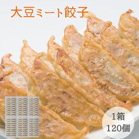 大豆ミート 餃子 120個入り(40個入り×3セット) 大豆たんぱくのギョーザ お肉を使わず 大豆ミート で作りました 動物性原料不使用 ベジタリアン の方も ソイミート お肉不使用 ヴィーガン ビーガン マクロビ 野菜 餃子