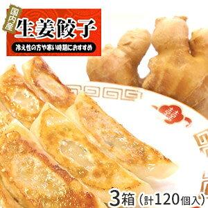 【3セット(120個)】生姜餃子 40個入×3セット / しょうが ぎょうざ ギョウザ ギョーザ お取り寄せ グルメ ご当地 お取り寄せ 冷凍餃子 国産 国産野菜 国産豚肉