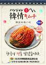 【冷蔵】韓情(ハンジョン)白菜キムチ10kg(韓国産)<韓国キムチ・本場キムチ>送料無料