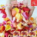 フラワーシャワー バラ 約75名分(25名×3セット) 生花 結婚式 ブライダル ウェディング 披露宴 ローズ ローズシャワー…