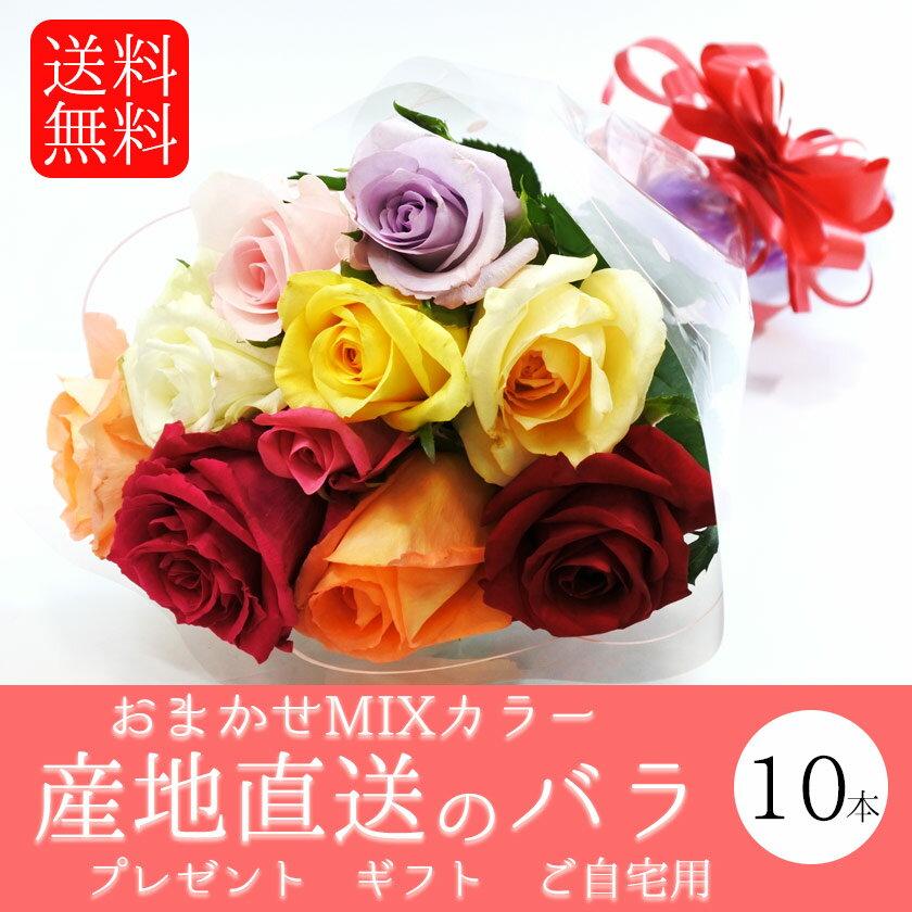 バラ 花束 10本 花 ギフト お中元 父の日 母の日 産地直送 送料無料 プレゼント 誕生日 贈り物 お試し 【鈴木バラ園】