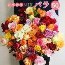 花束 バラ 50本 プレゼント 送料無料 ギフト 誕生日 送迎会 お祝い 産地直送 産直 国産 贈り物 薔薇 記念日 敬老の日…