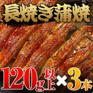 愛知三河一色産うなぎ長焼蒲焼120g以上3本