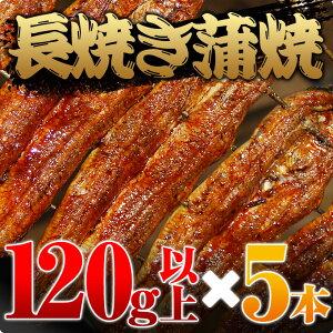愛知三河一色産うなぎ長焼蒲焼120g以上5本