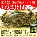 カニ!超新鮮!獲れたての活き締めワタリガニ(メス)特大1尾(約450g)3尾入びっくりするほど大きいサイズ!
