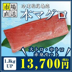 国産養殖本マグロ(冷凍)1.3kgUP