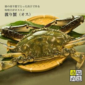 【半額SALE】カニ今から旬!超新鮮!メスには負けない!獲れたての活き締めワタリガニ(オス)1尾(約300g)