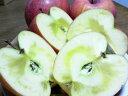 【訳あり】】【りんご、ふじ】秋映【送料無料】バラ詰め!お徳用メガ入り11キロ!昔の甘い完熟サンふじ家庭用
