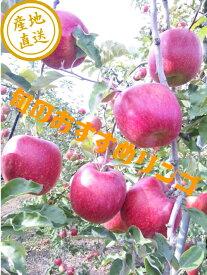 【送料無料】【訳あり】【りんご】新品種シナノホッペ、秋映、シナノスイート、《シナノゴールド》《あいかの香り》《完熟サンふじ》等、10キロ家庭用