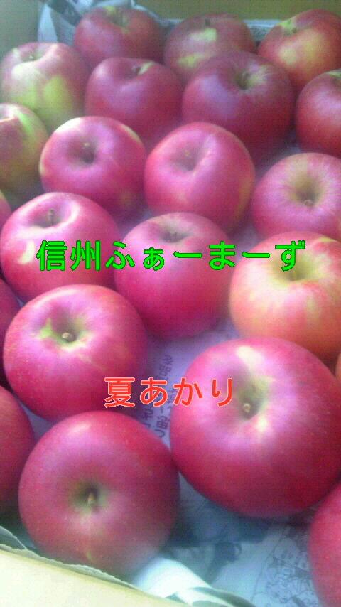 【りんご】【送料無料】【訳あり】新品種!夏あかり、つがる、蜜入りサンふじ・あいかの香り・シナノゴールド等、各5キロ家庭用