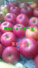 【りんご】【送料無料】【訳あり】新品種!夏あかり、シナノホッペ、蜜入りサンふじ・あいかの香り・シナノゴールド等、各5キロ家庭用
